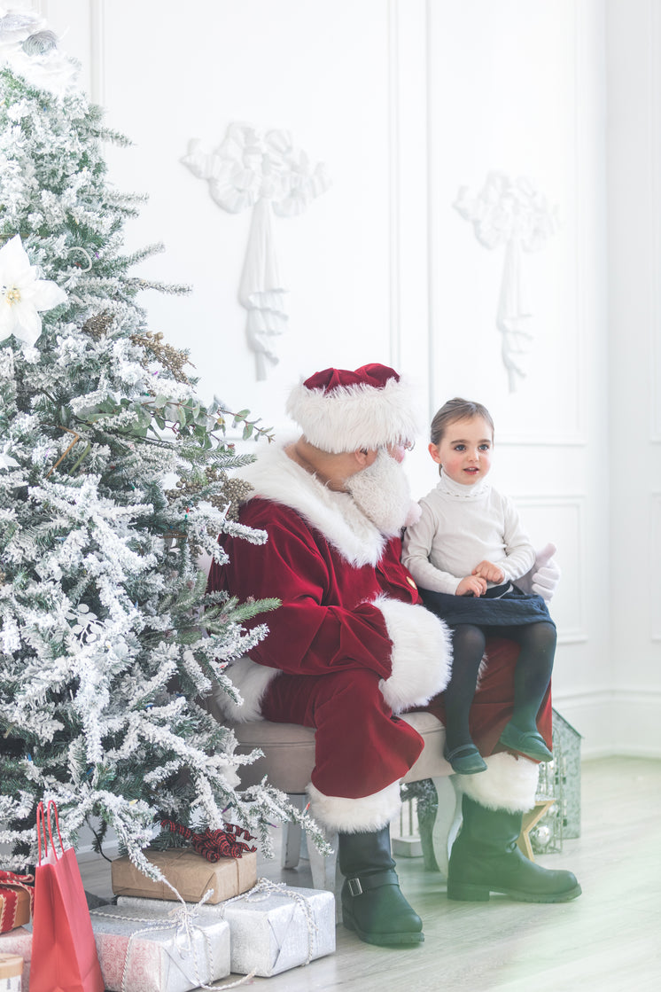 Young one Meets Santa Claus